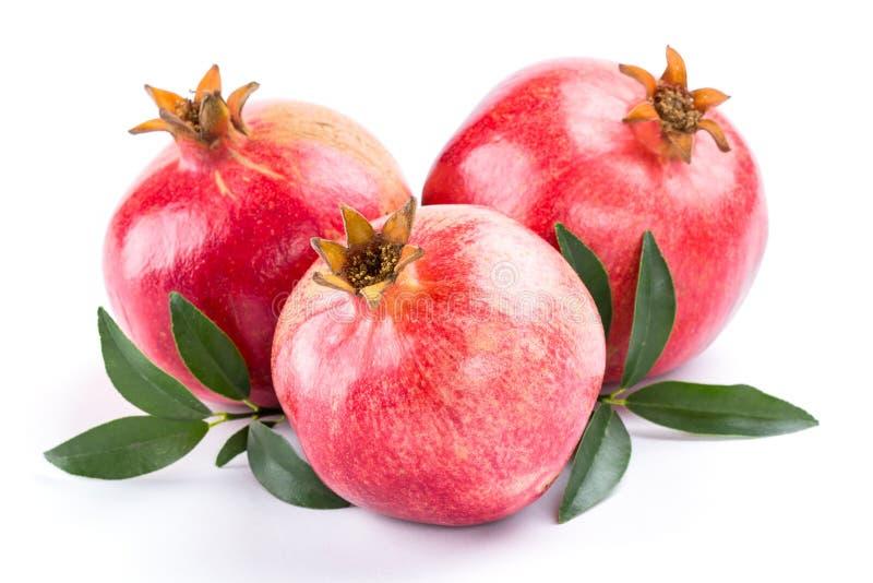saftig pomegranate royaltyfria bilder