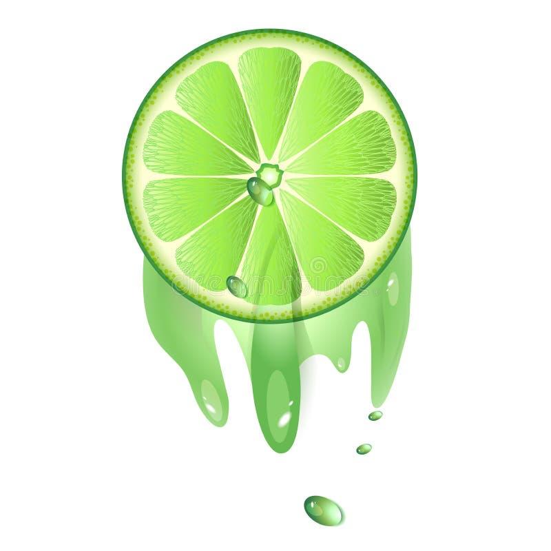 Saftig skiva av limefruktfrukt stock illustrationer