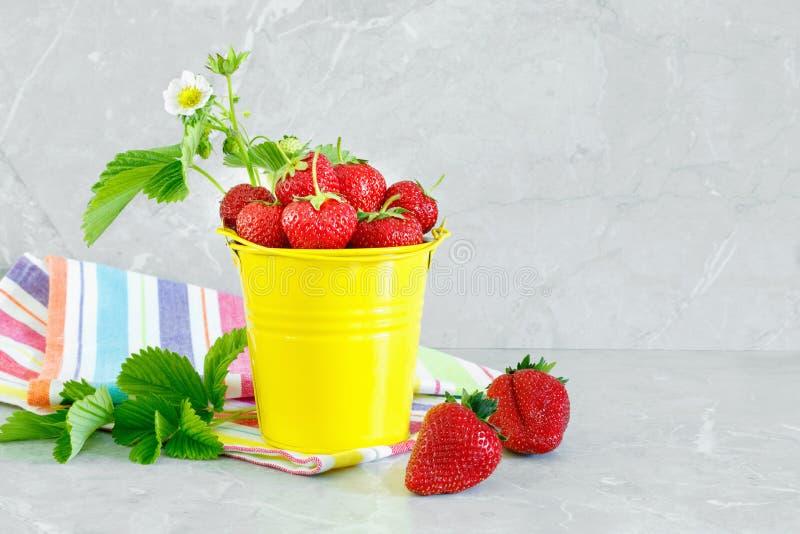 Saftiga mogna smakliga jordgubbar i hink f?r gul metall med den randiga handduken p? stencountertop arkivbild