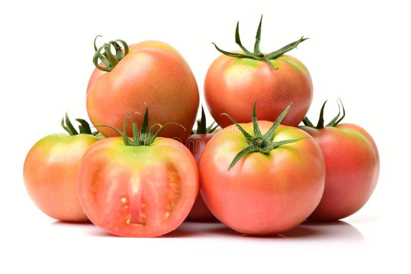saftiga röda tomater fotografering för bildbyråer