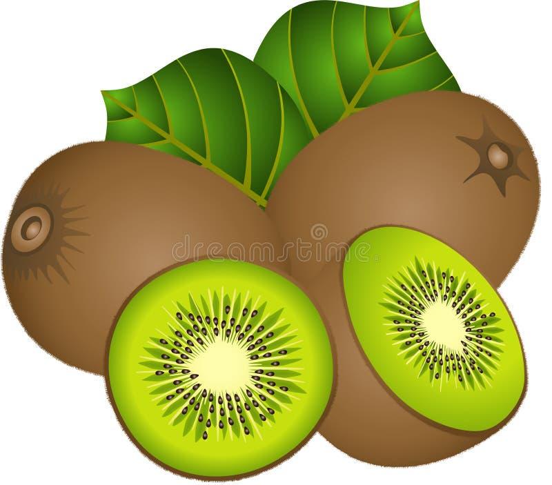 Saftige Kiwi stock abbildung