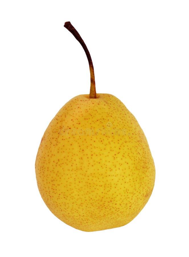 Saftige reife gelbe Birne mit der Griffnahaufnahme lokalisiert lizenzfreie stockbilder