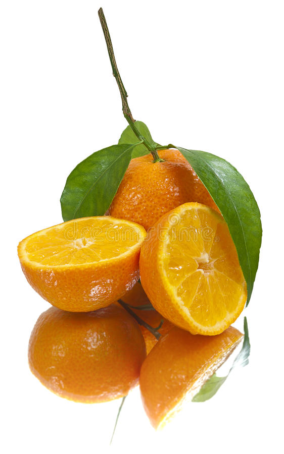 Saftige Tangerinen (getrennt) stockfotos