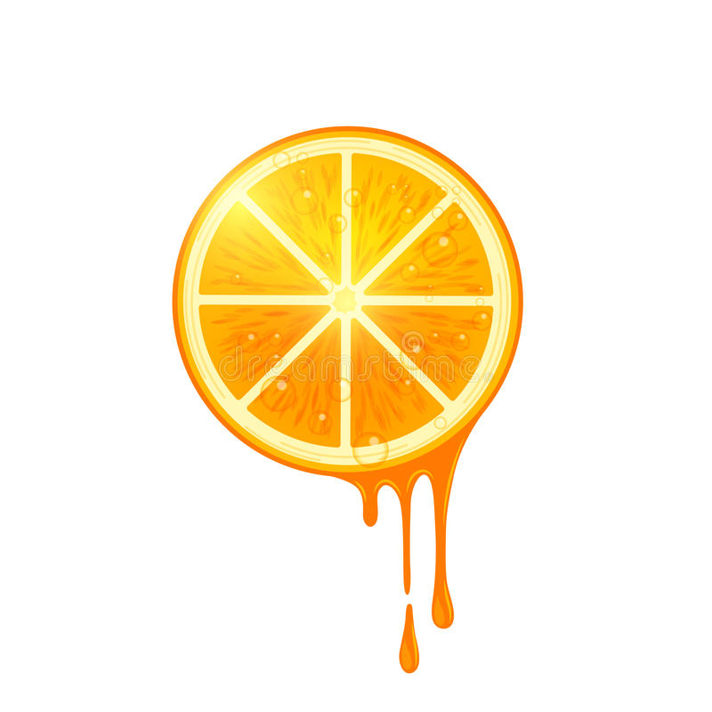Saftige Vektor-Orangen-Scheibe lizenzfreie abbildung