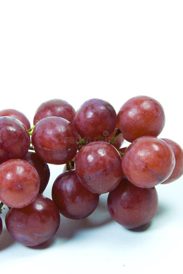 saftigt rött seedless för druvor arkivbild