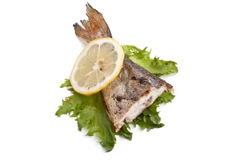 Saga för fisk för havsbraxen med grönsallat och citronen royaltyfri fotografi