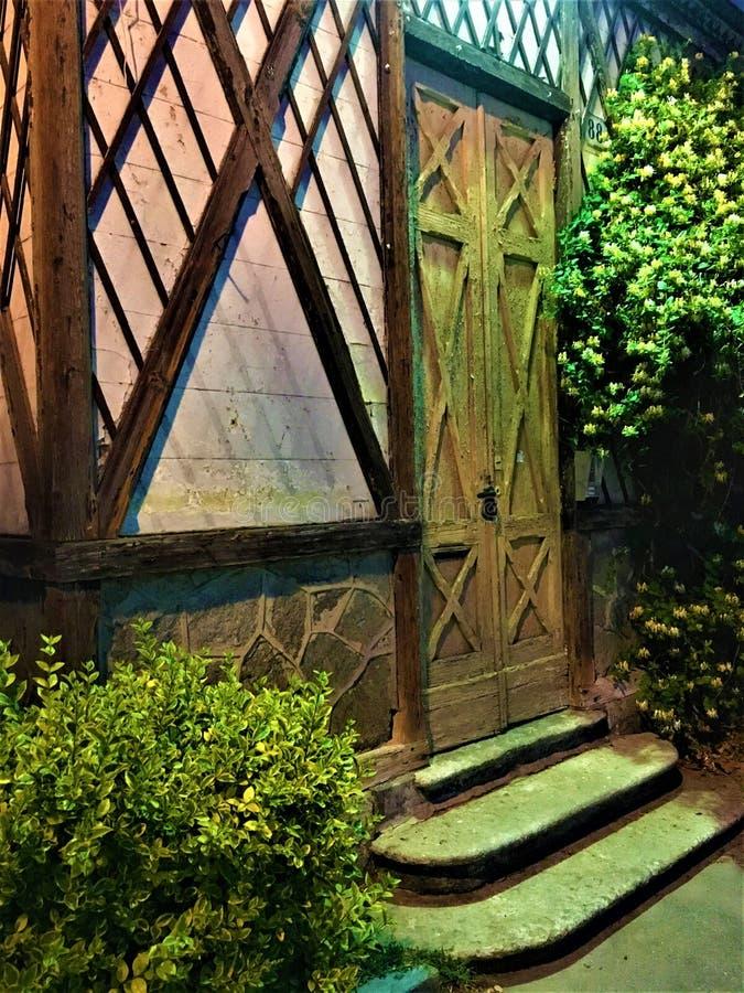 Saga- och tappningdörr, växter och ljus som tjusar atmosfär royaltyfri fotografi
