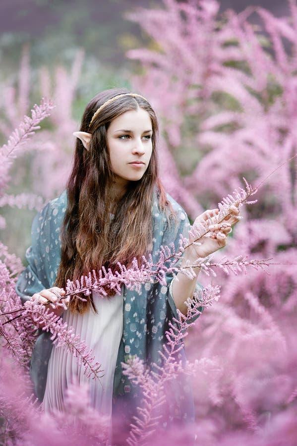 Sagaflicka Portrai av mystikerälvakvinnan royaltyfri foto