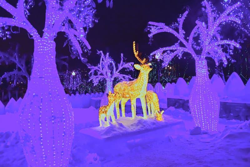 Download Sagaren redaktionell foto. Bild av lampa, girland, natt - 106826910