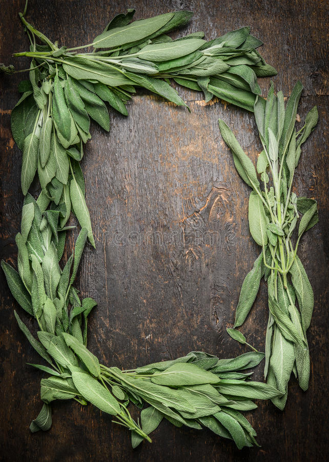 Sage bunch leaves on dark wooden background, frame, top view royalty free stock photos