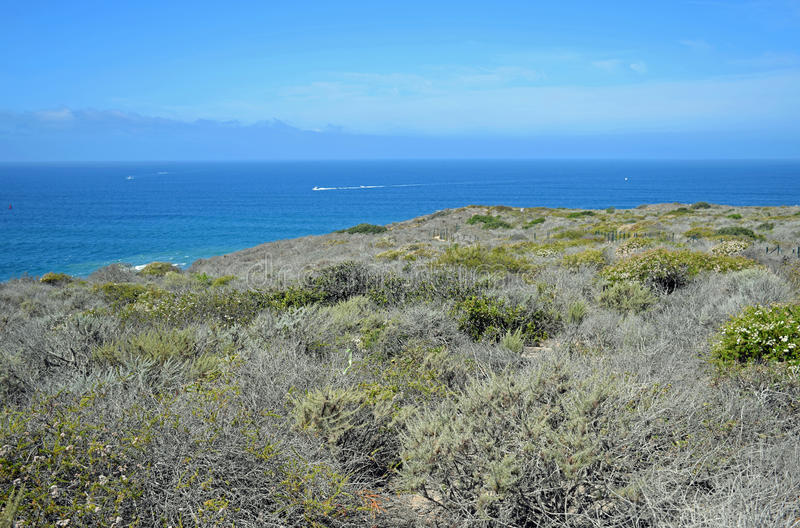 Sage Community costero en el área de Dana Point Headlands Conservation imagen de archivo