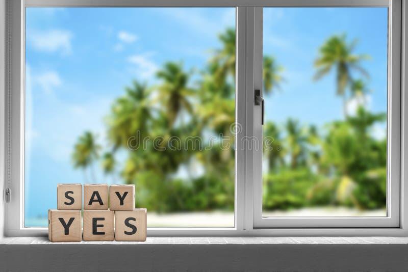 Sage ja, in einem Fenster an einem tropischen Strand lizenzfreies stockfoto