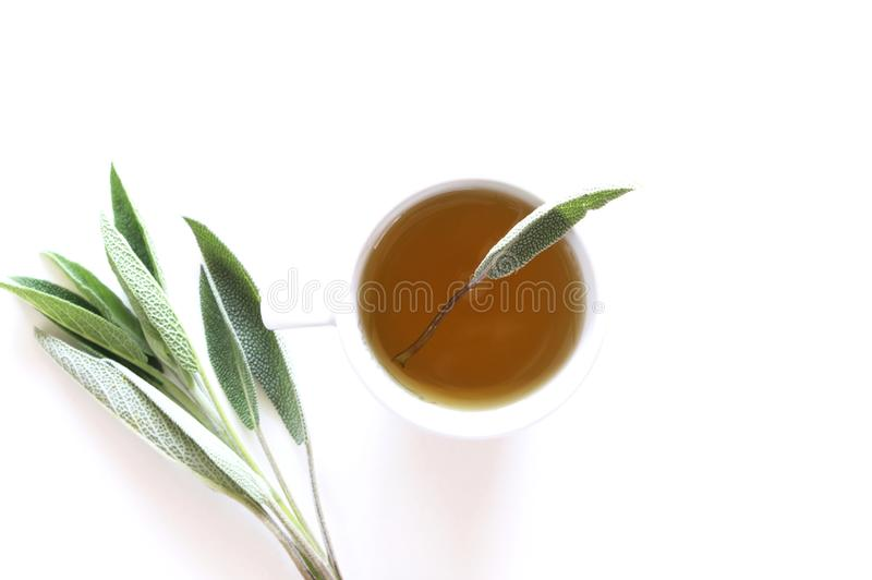 Sage tea and sage leaves. Infusion made from sage leaves. Medicinal herb Salvia officinalis. The concept of healthy nutrition stock photos