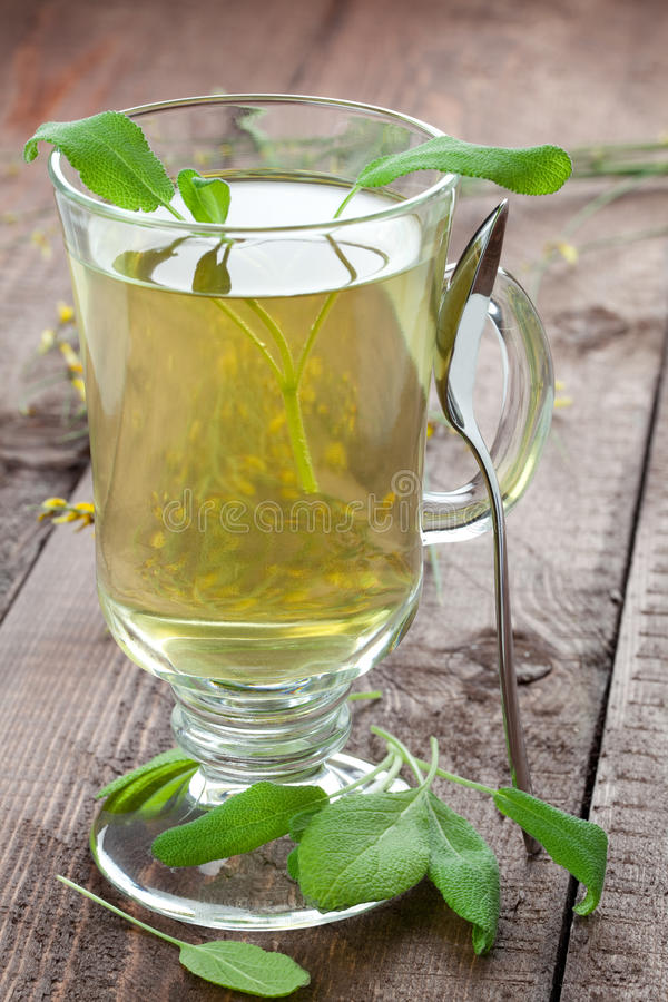 Sage tea with spoon. Fresh sage tea with spoon on table royalty free stock images