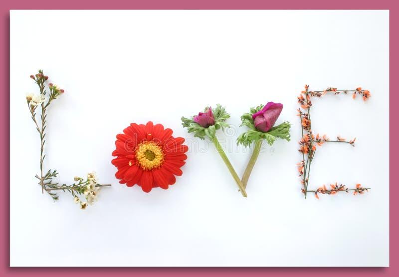 Sagen Sie sie mit Blumen: Liebe lizenzfreies stockfoto
