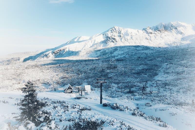 Sagolikt vinterlandskap, berg och julgranar som täckas med snö, magisk festlig atmosfär som tonas arkivbild