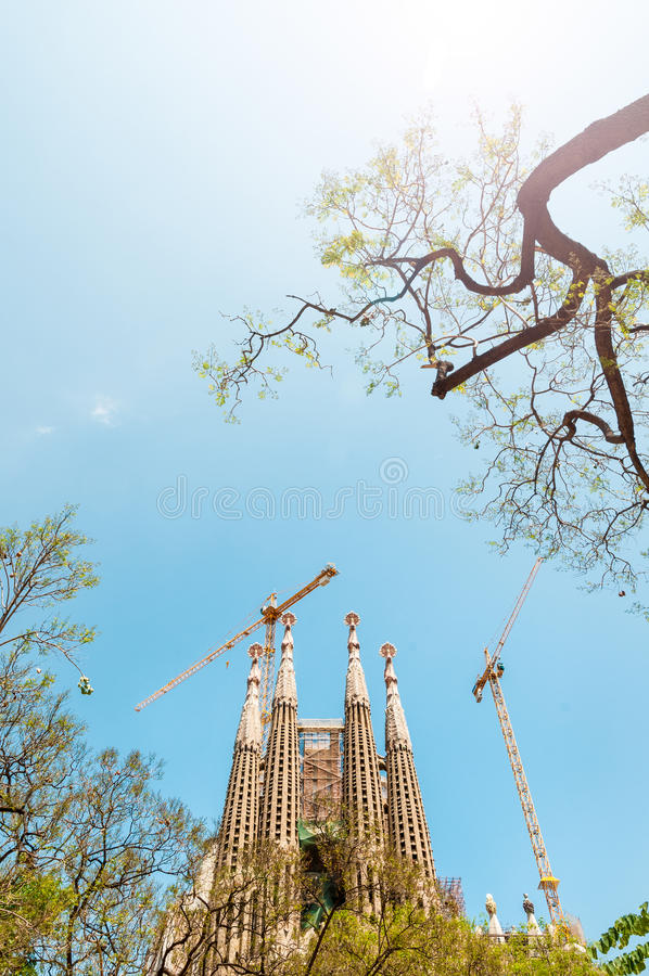 Sagrada Familia in Barcelona, Spain, Europe.