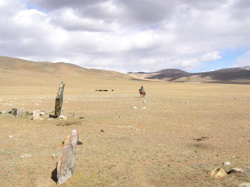 SAGSAY, MONGOLIA - MAY 22, 2012: Mongolian horseman shepherd his of sheep in the desert stock photography