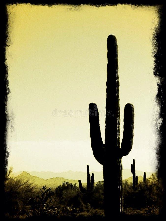 saguaro stock foto's