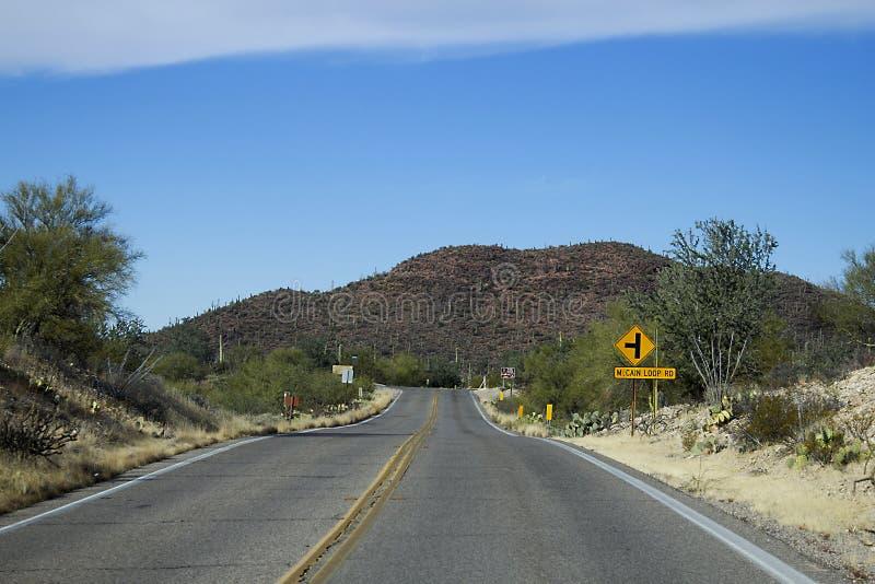 Saguaro Nationaal Park stock foto