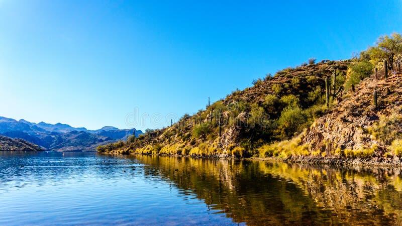 Saguaro sjö och de omgeende bergen i Arizona royaltyfria foton