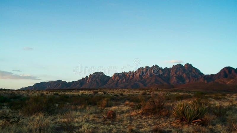 Saguaros en la puesta del sol delante de las montañas de la superstición Desierto de Sonoran cerca de Phoenix imagen de archivo libre de regalías