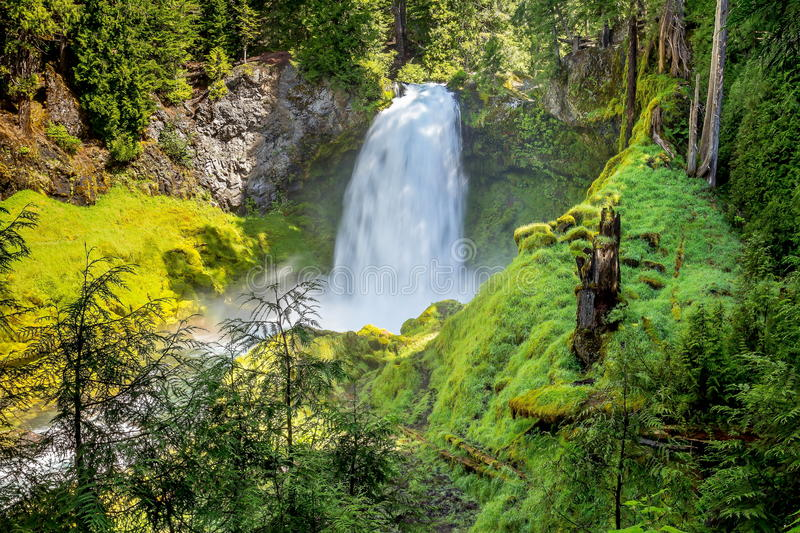 Sahalie Falls. On the upper McKenzie River in Oregon royalty free stock photos