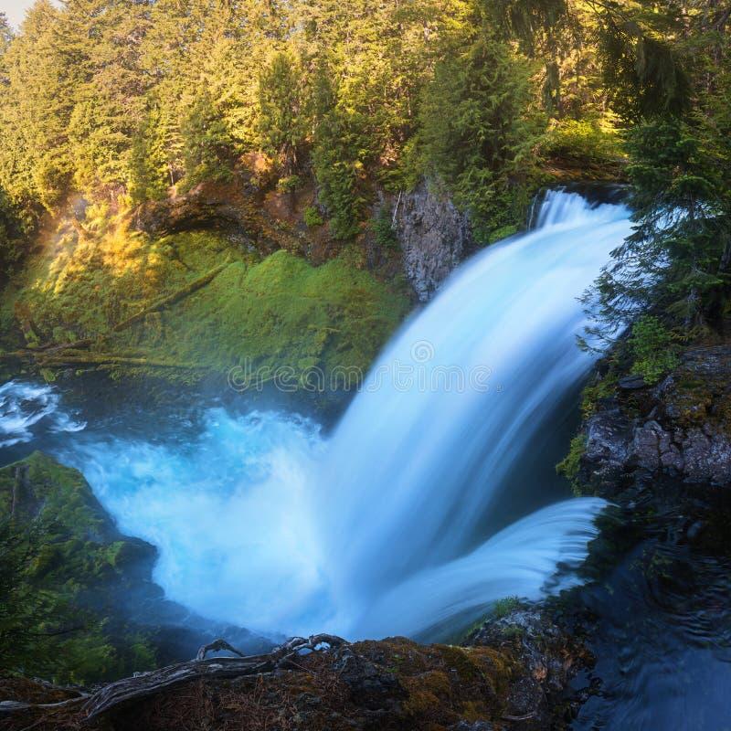 Sahalie nedgångar är första av de tre viktiga vattenfallen av den McKenzie floden, i hjärtan av den Willamette nationalskogen royaltyfria foton