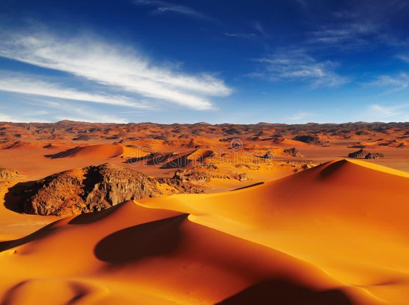 Sahara öken royaltyfri foto
