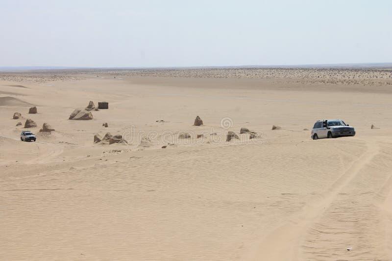 Sahara öken Tunisien, den största öknen i världen royaltyfria bilder