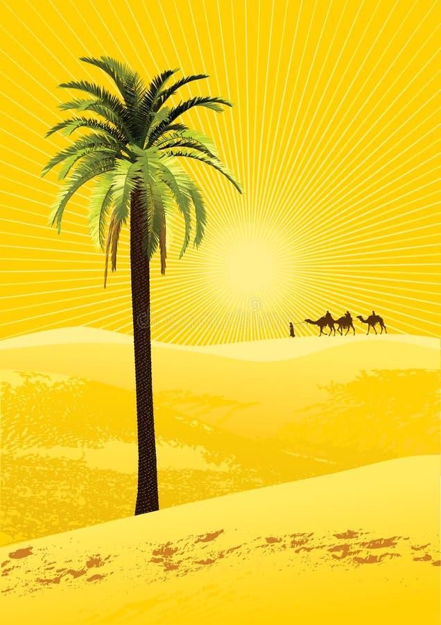 Sahara ilustracji