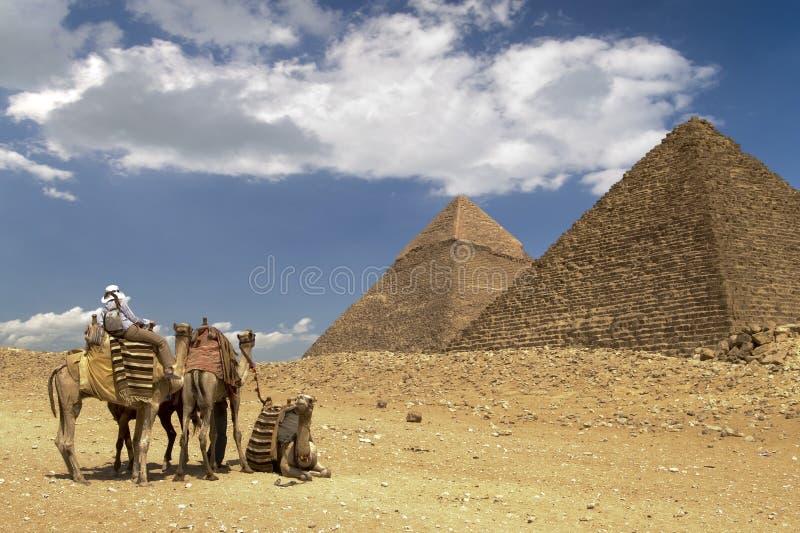 Sahara ciepła fotografia royalty free