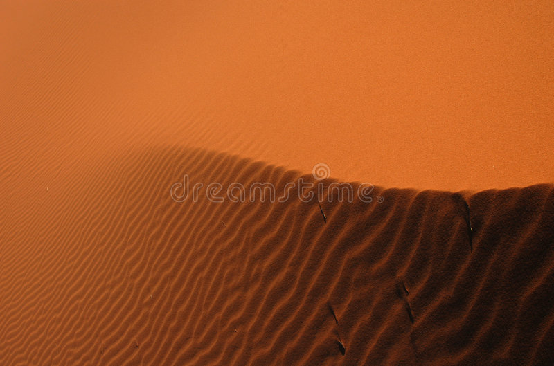Sahara desert zdjęcia stock