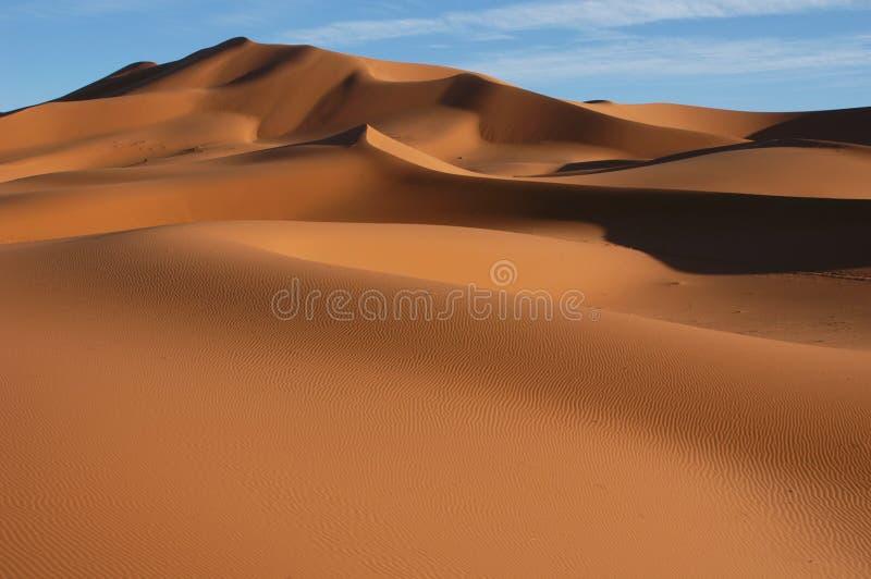 Sahara Desert royalty free stock images