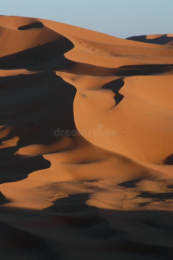 Download Sahara Desert stock photo. Image of inhospitable, egypt - 456362