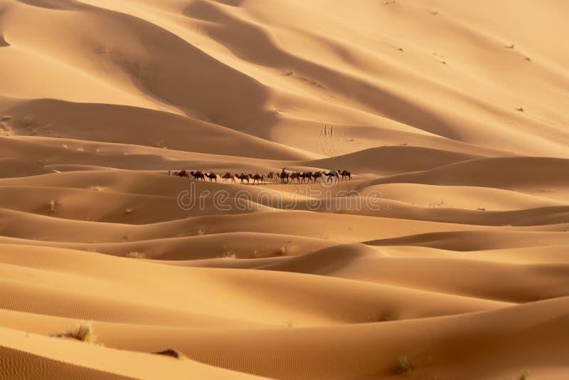 Sahara Desert em Merzouga, Marrocos fotos de stock