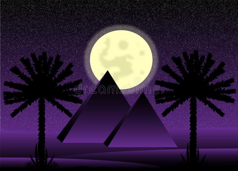 Sahara desert at night stock illustration