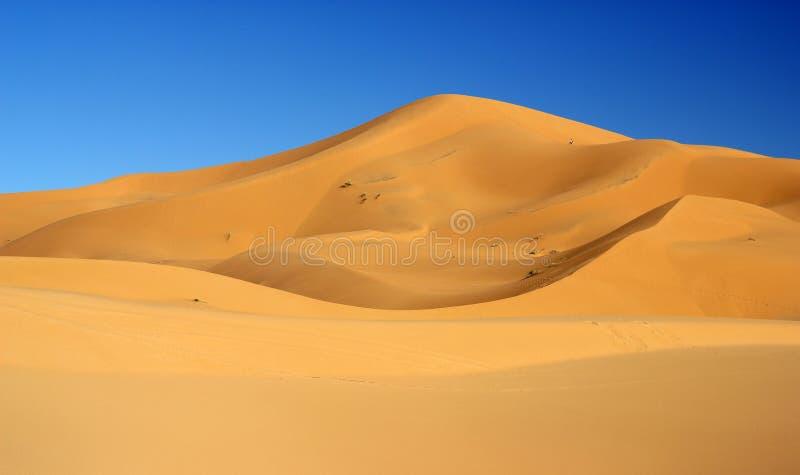 Sahara Desert que sorprende imagen de archivo libre de regalías