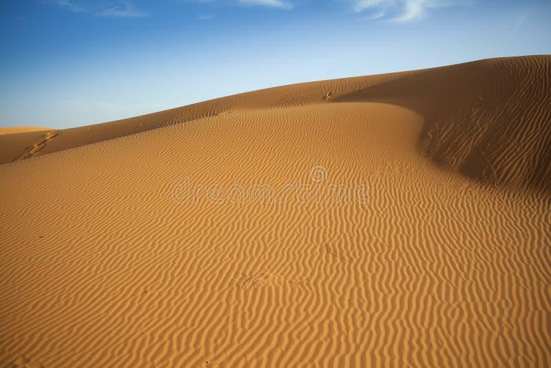 Sahara diuny fotografia royalty free