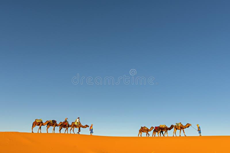 SAHARA - KWIECIEŃ 13: Turyści w wielbłądziej karawanie w Merzoug zdjęcie royalty free
