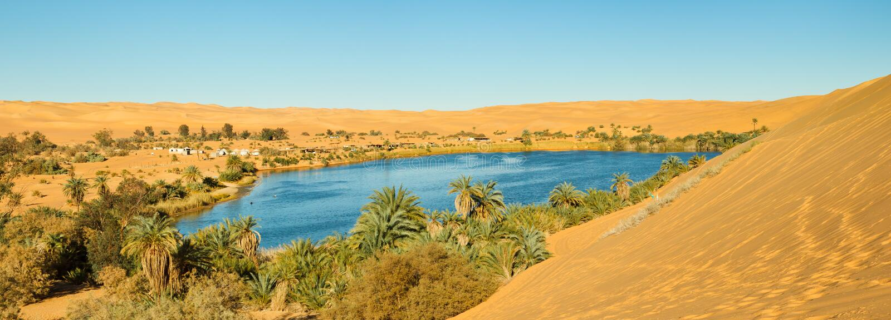 Sahara-Oasen-Panorama stockfotografie
