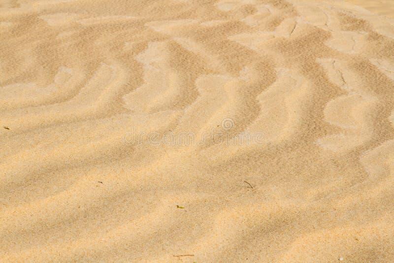 Sahara senden Beschaffenheit lizenzfreies stockbild
