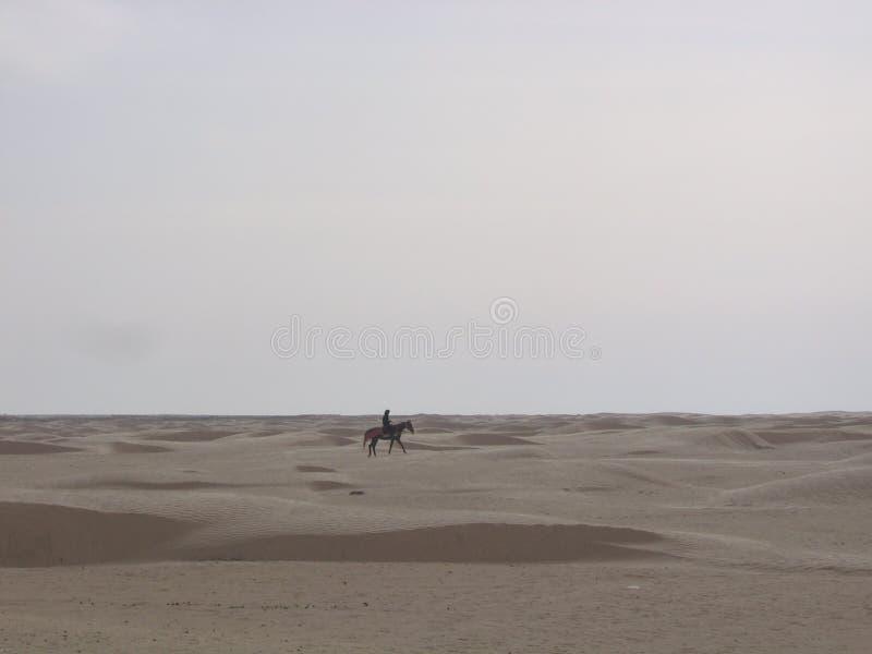 Sahara - Tunísia fotos de stock