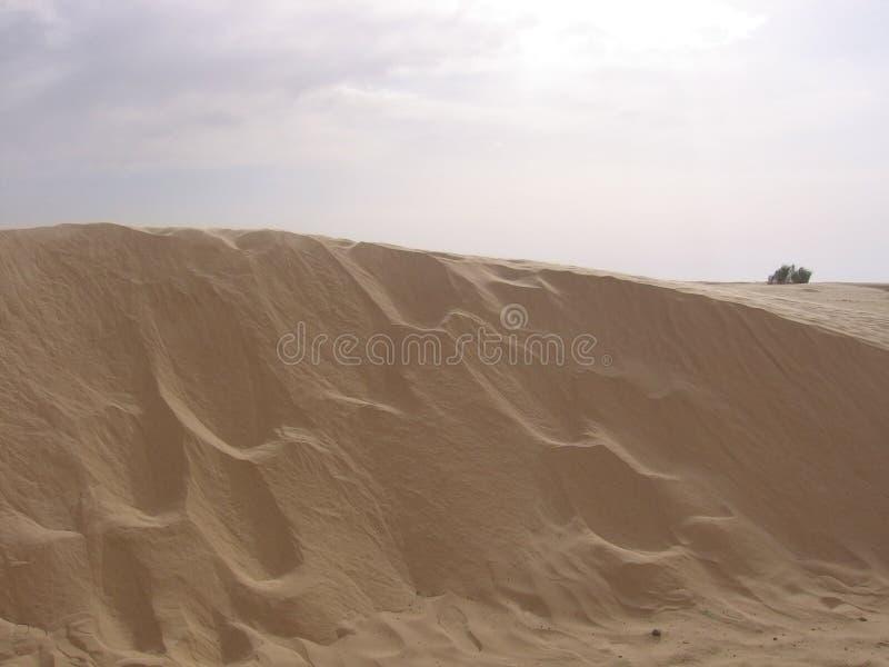 Sahara - Tunísia imagens de stock
