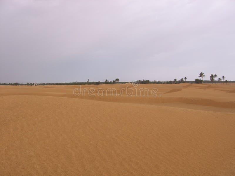 Sahara - Tunísia imagem de stock