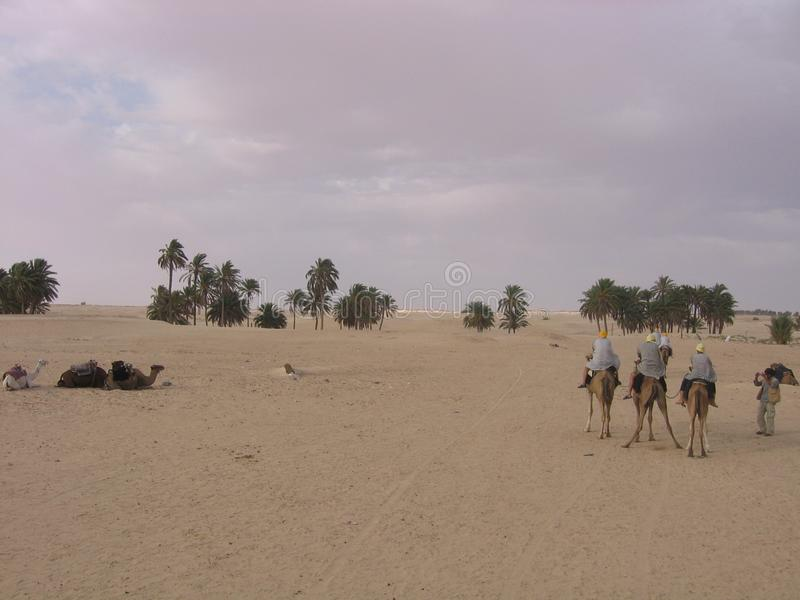 Sahara - Tunesien stockfotografie
