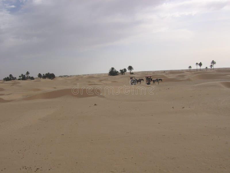 Sahara - Tunesien lizenzfreies stockbild