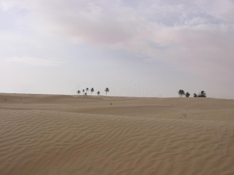 Sahara, Tunezja - zdjęcia stock