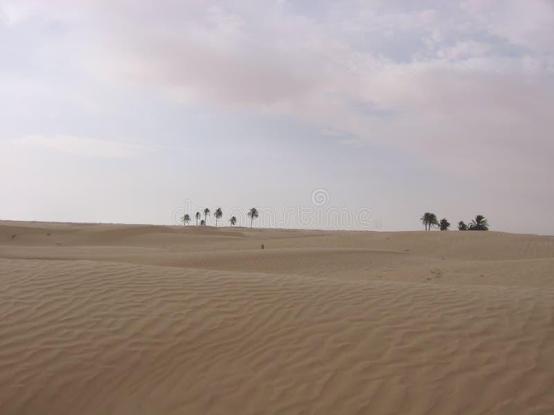 Sahara - Tunisien arkivfoton
