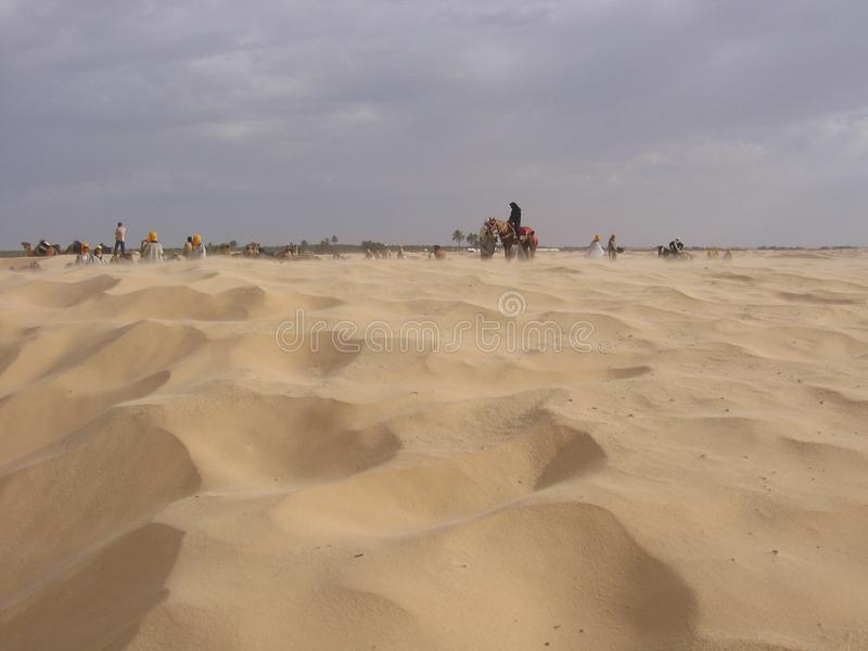 Sahara - Tunisien royaltyfri bild